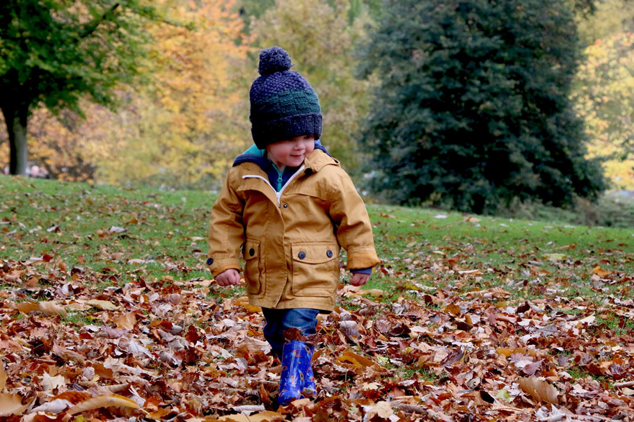 UNSPLASH-child-leaves-michael-podger_OPT.jpg